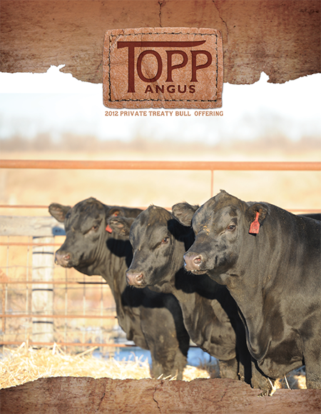 2012 Topp Angus Private Treaty Bull Catalog