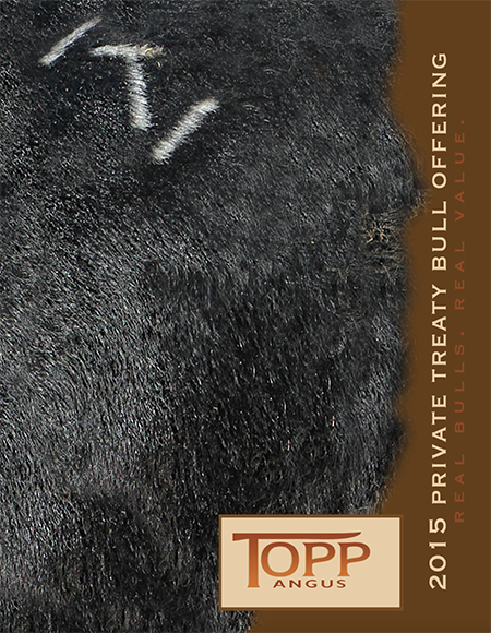 2015 Topp Angus Private Treaty Bull Catalog