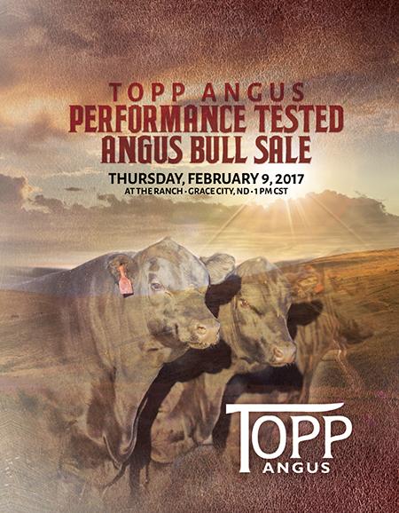 2017 Topp Angus Bull Sale Catalog