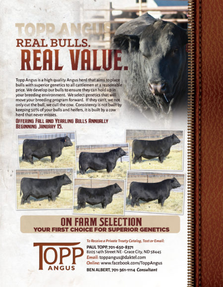 Topp Angus 2016 Bull Sale Promo