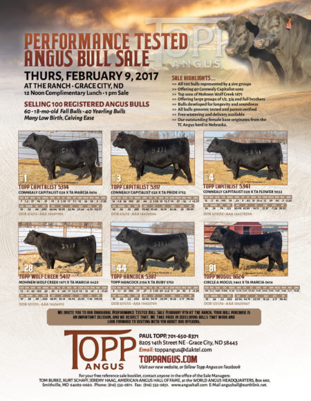 Topp Angus 2017 Sale Promotional Ad