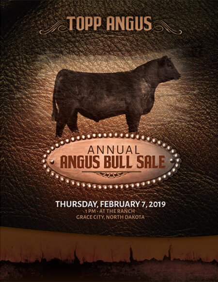 archive-2019-bull-sale-catalog