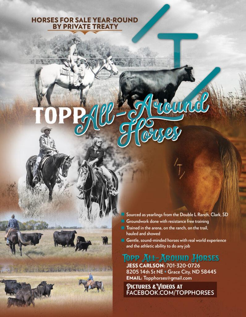 Topp Ranch Horses